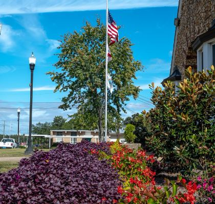 Flag pole and flowers